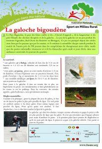 galoche bigoudene (Copier)